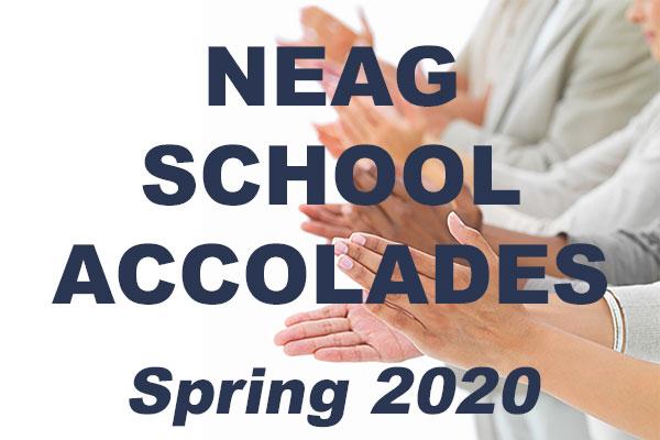 Neag School Accolades Spring 2020